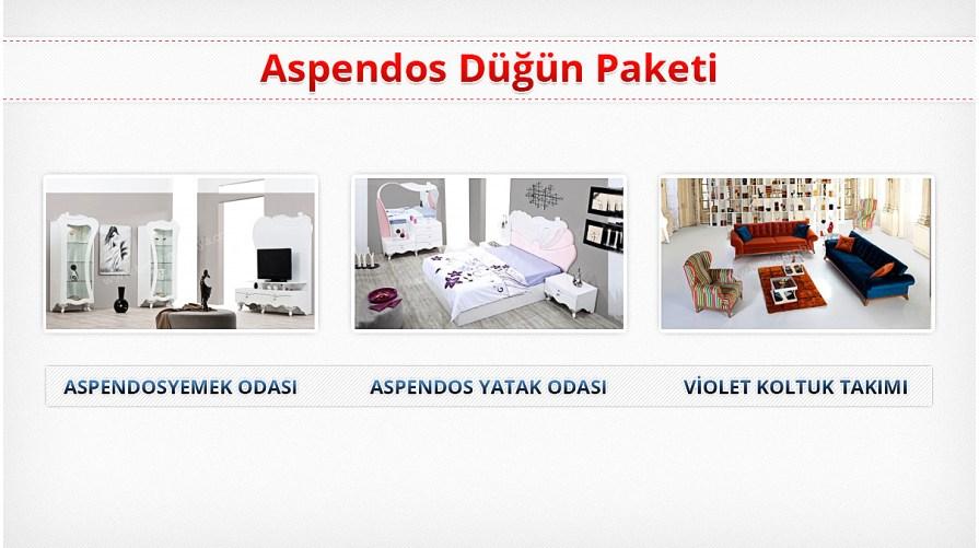 Aspendos Avangarde Düğün Paketi