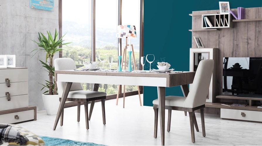 Mercan Modern Yemek Masası Sandalye